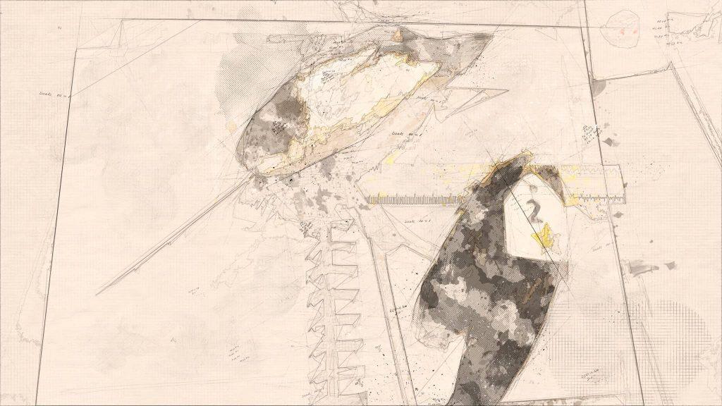 Bird Identification Workshop