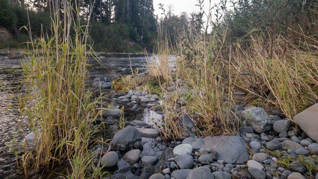 Sol Doc River