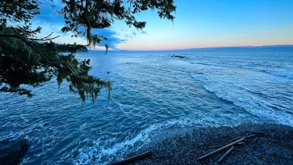 Crescent Beach New Base Camp For COASST Surveys