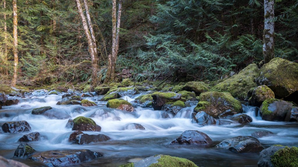 This is downstream from the 285' fall that bears the same name. Photo Credit: Steve Weileman