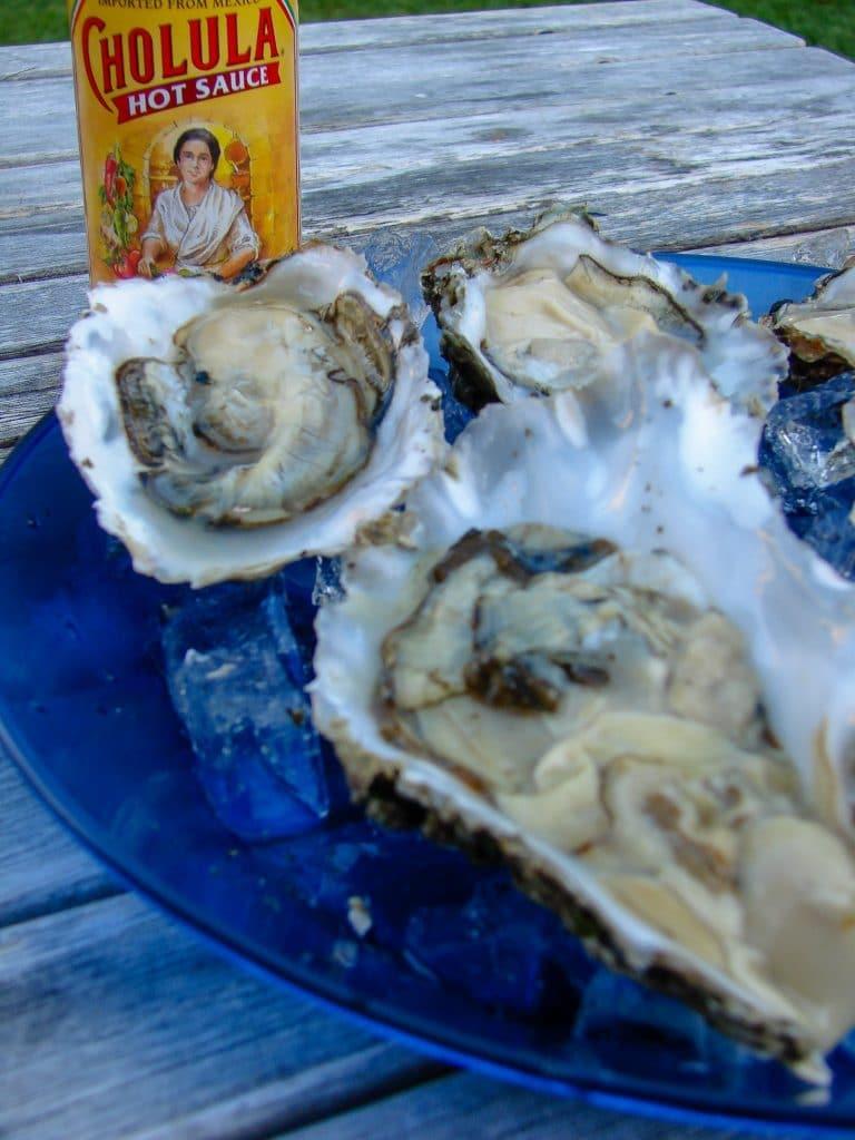 Brady's Oysters