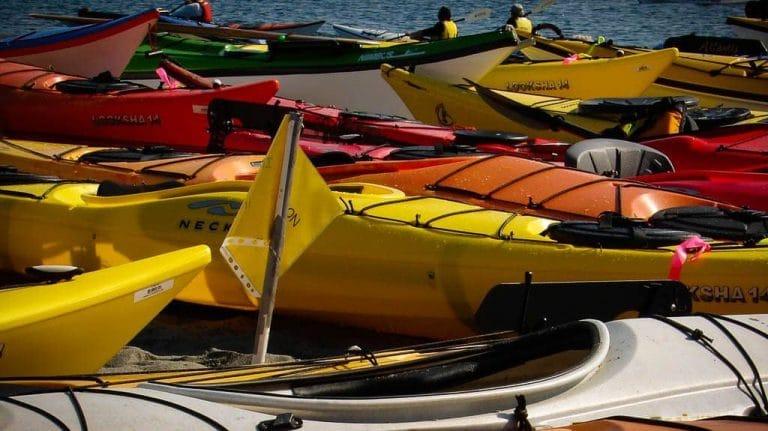 Jelly Bean Kayaks