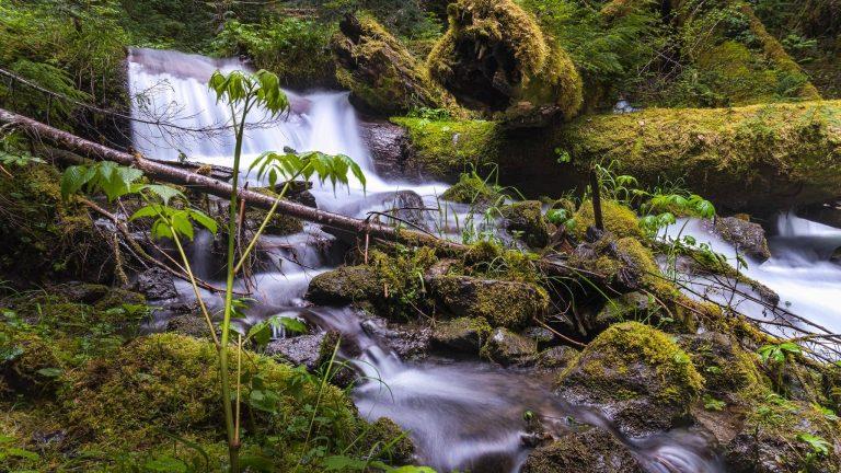 unnamed-falls