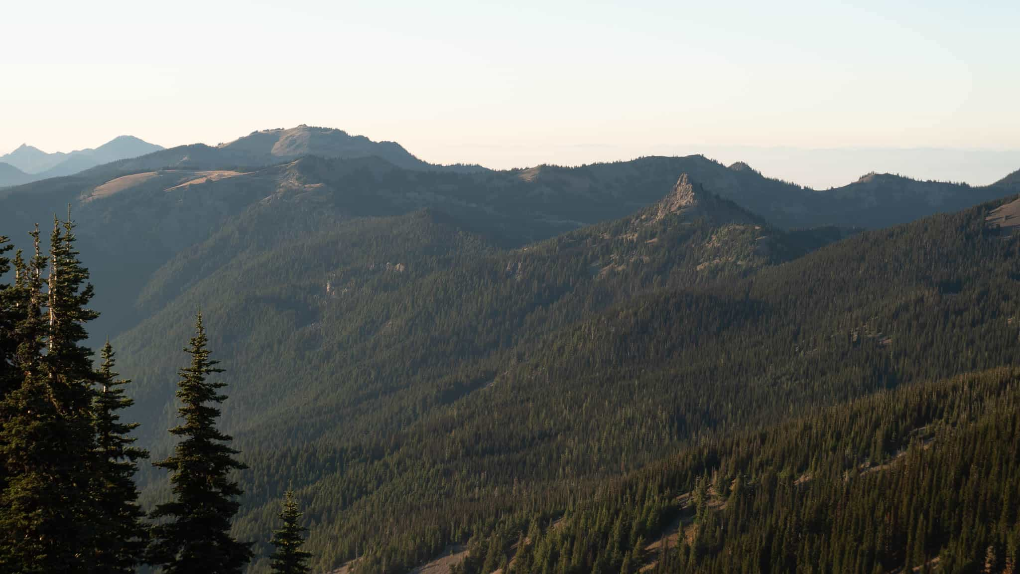 A view of Steeple Rock from across the valley. Hurricaine Ridge is in the background to the left.