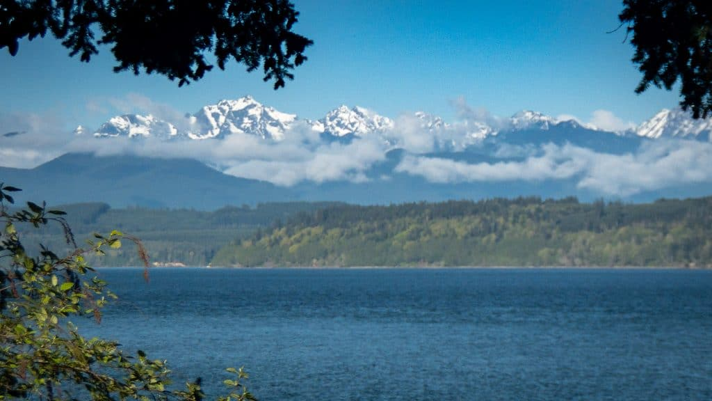 Hood Canal with the Olympic Mountains in the background