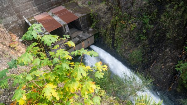 Off Season at the Wynoochee Dam