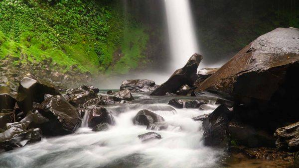 Costa Rica: Surviving a Cattle Stampede in La Fortuna