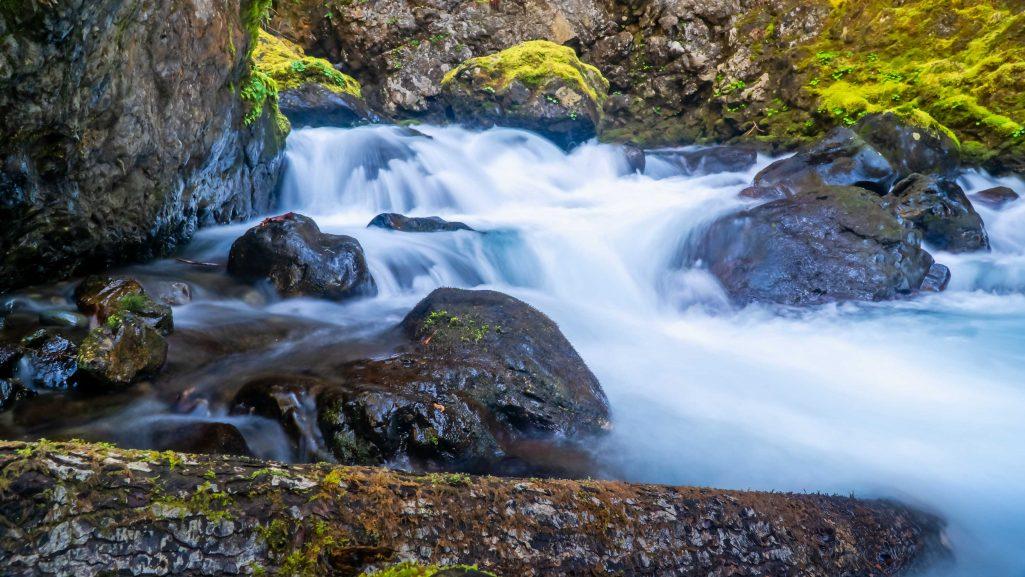 Hamma Hamma - Upper Lena Creek Falls