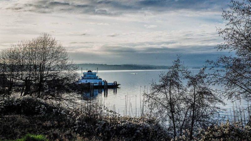 A Serene Evening at the Steilacoom Dock