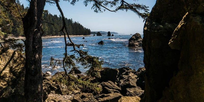Return from Milky Way Shoot at Lake Ozette