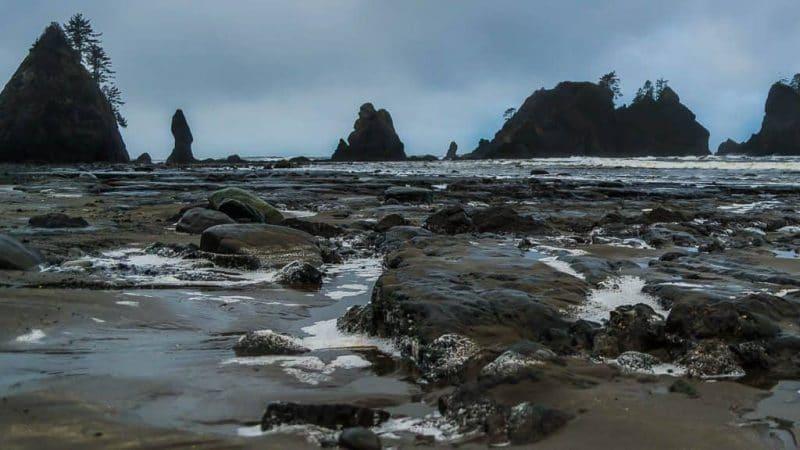 Exploring the Often Overlooked Tidal Zone