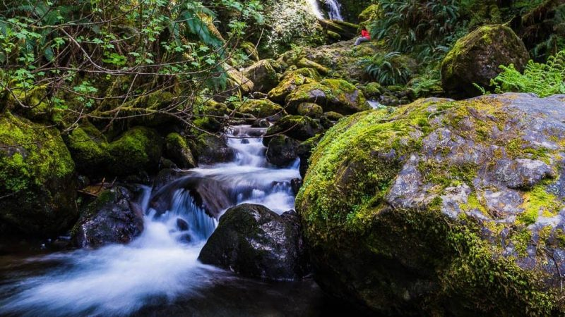 What Is It About Merriman Falls?