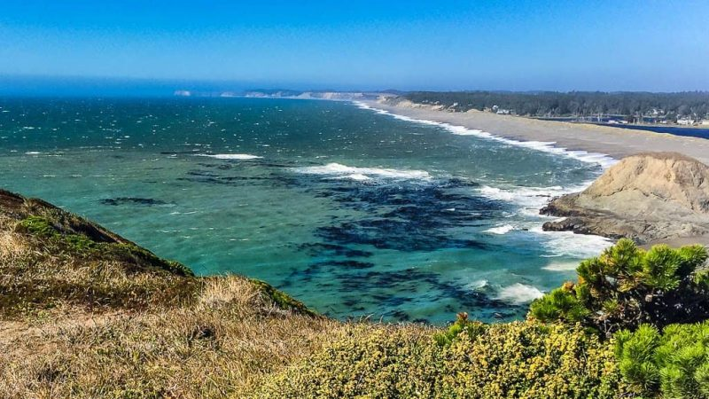 Hidden Beauty of Port Orford